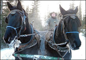 Entrance Ranch and log cabins Sleigh Rides